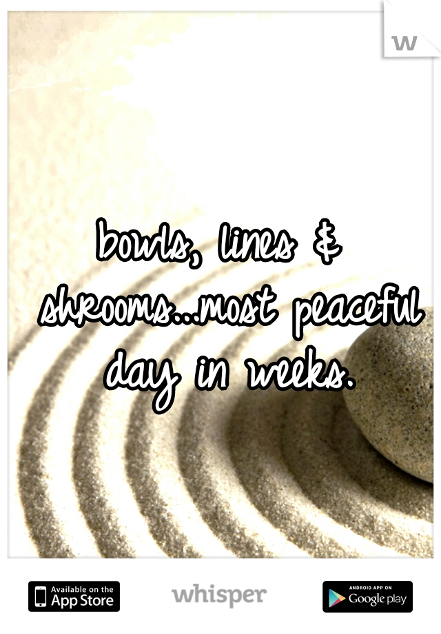 bowls, lines & shrooms...most peaceful day in weeks.