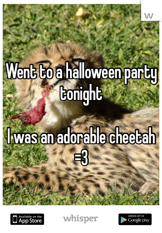 Went to a halloween party tonight  I was an adorable cheetah =3