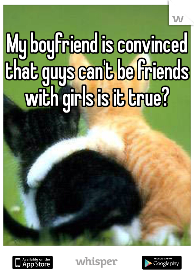 My boyfriend is convinced that guys can't be friends with girls is it true?