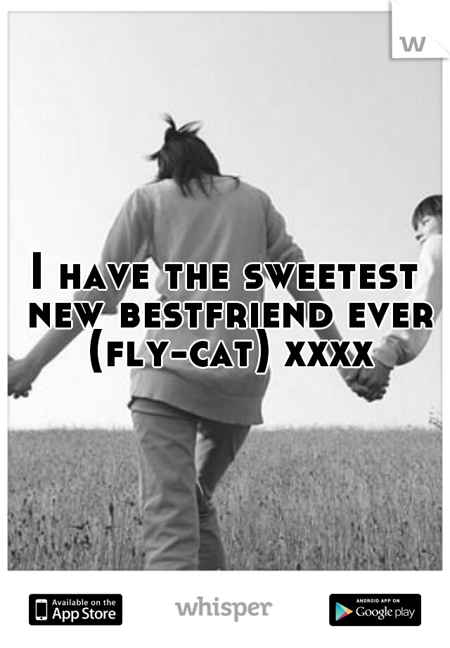 I have the sweetest new bestfriend ever (fly-cat) xxxxx