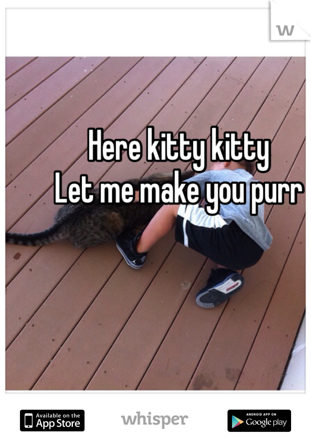 Here kitty kitty Let me make you purr