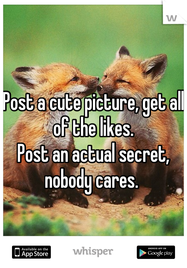 Post a cute picture, get all of the likes.                                          Post an actual secret, nobody cares.