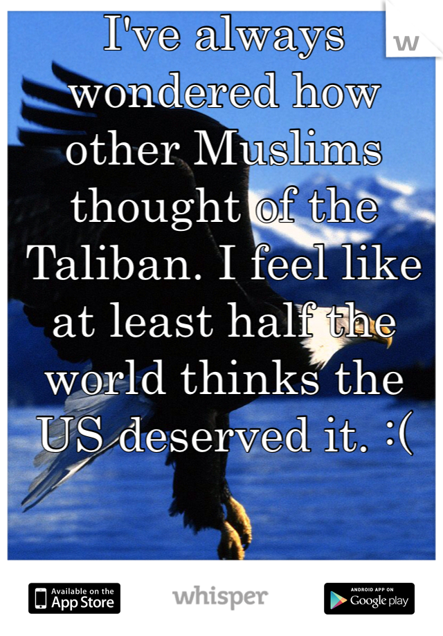 I've always wondered how other Muslims thought of the Taliban. I feel like at least half the world thinks the US deserved it. :(