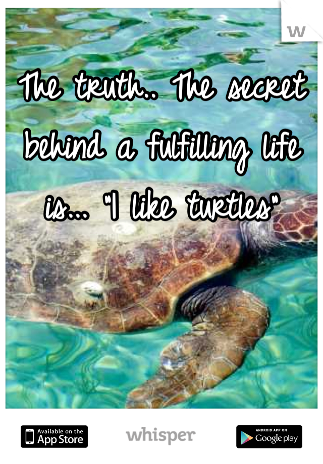 """The truth.. The secret behind a fulfilling life is... """"I like turtles"""""""