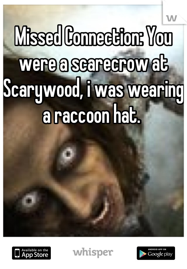 Missed Connection: You were a scarecrow at Scarywood, i was wearing a raccoon hat.