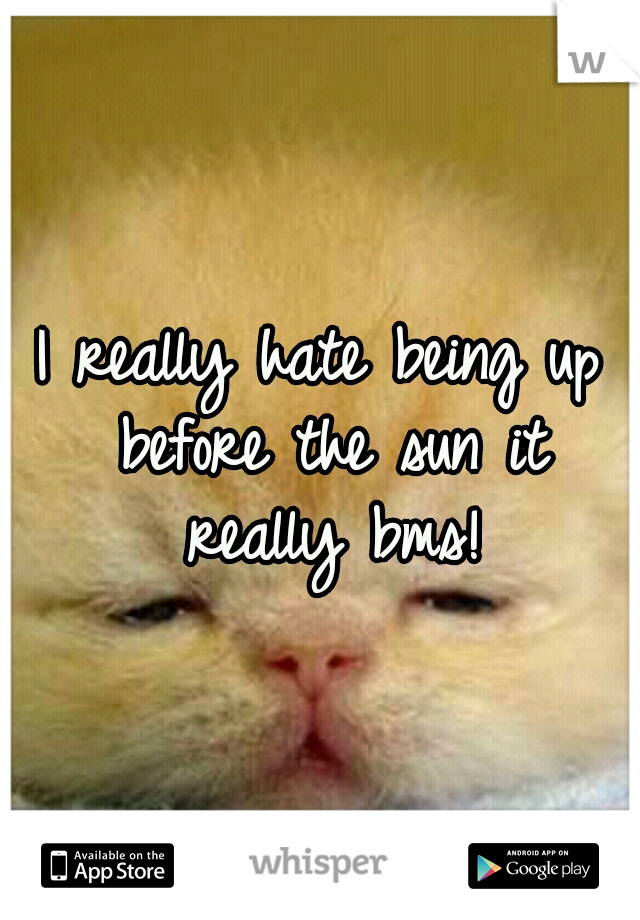 I really hate being up before the sun it really bms!