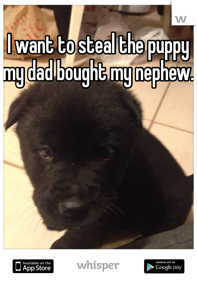I want to steal the puppy my dad bought my nephew.