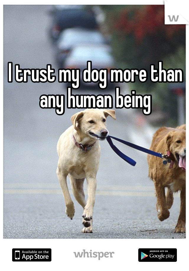 I trust my dog more than any human being