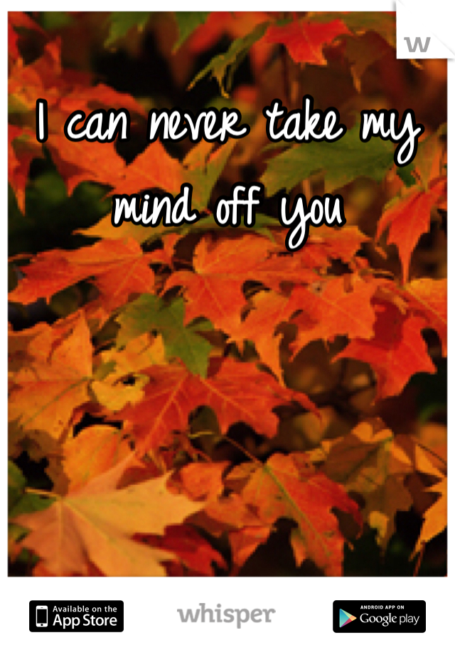 I can never take my mind off you
