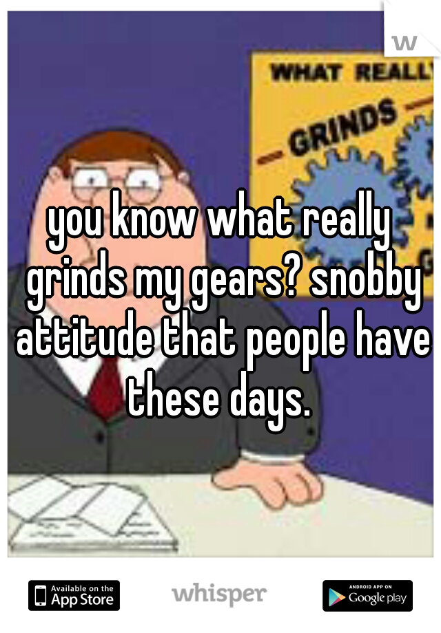 you know what really grinds my gears? snobby attitude that people have these days.