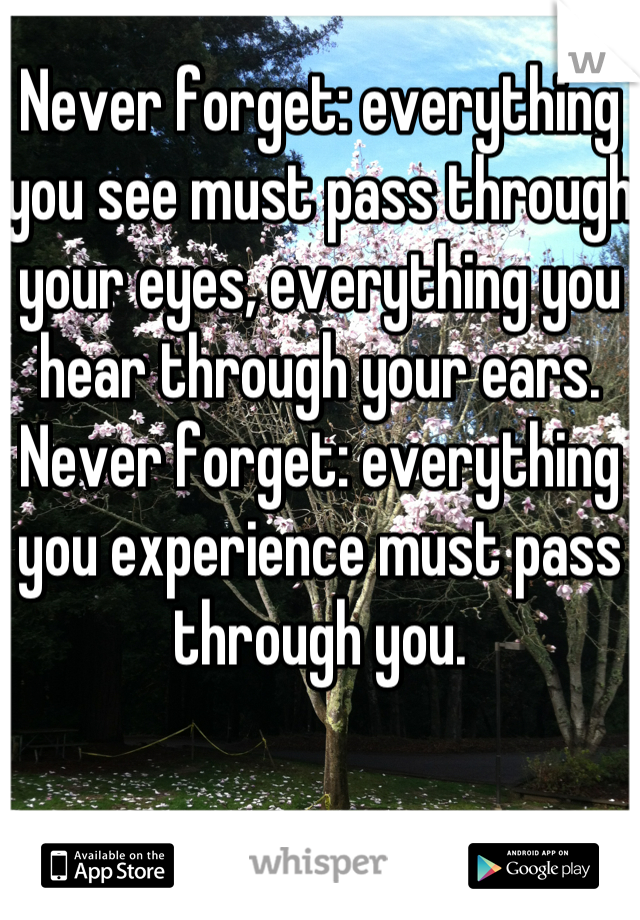 Never forget: everything you see must pass through your eyes, everything you hear through your ears. Never forget: everything you experience must pass through you.