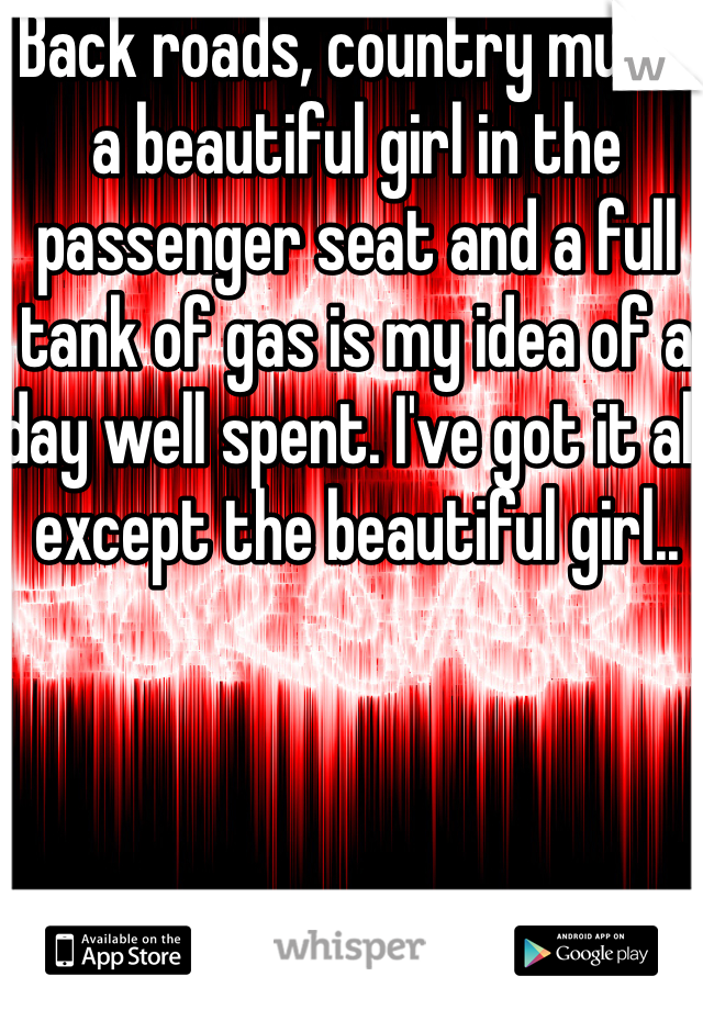 Back roads, country music a beautiful girl in the passenger seat and a full tank of gas is my idea of a day well spent. I've got it all except the beautiful girl..