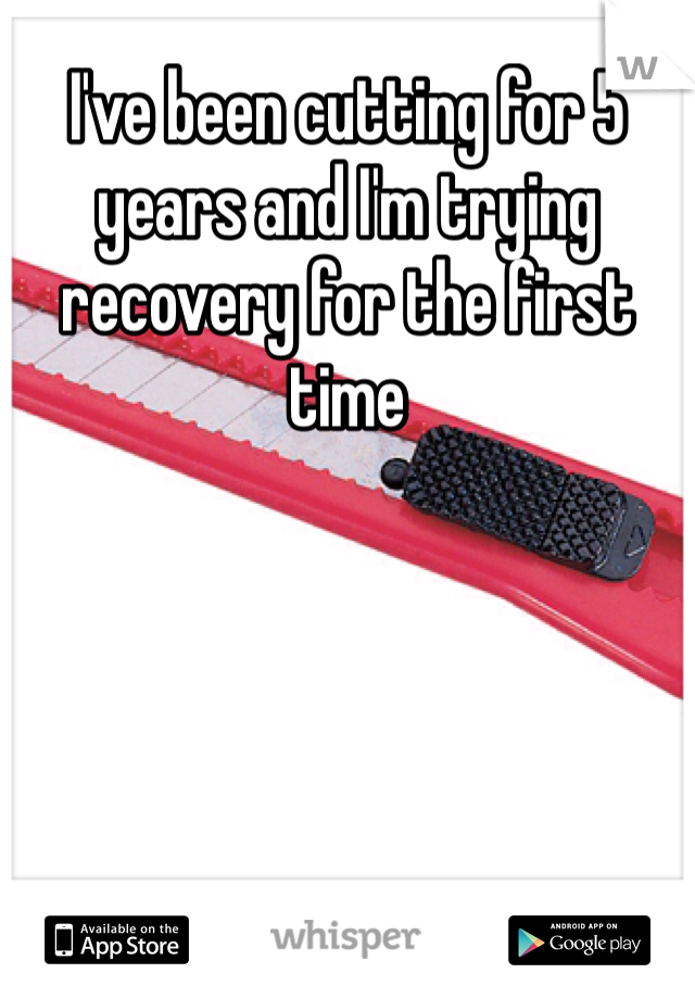 I've been cutting for 5 years and I'm trying recovery for the first time