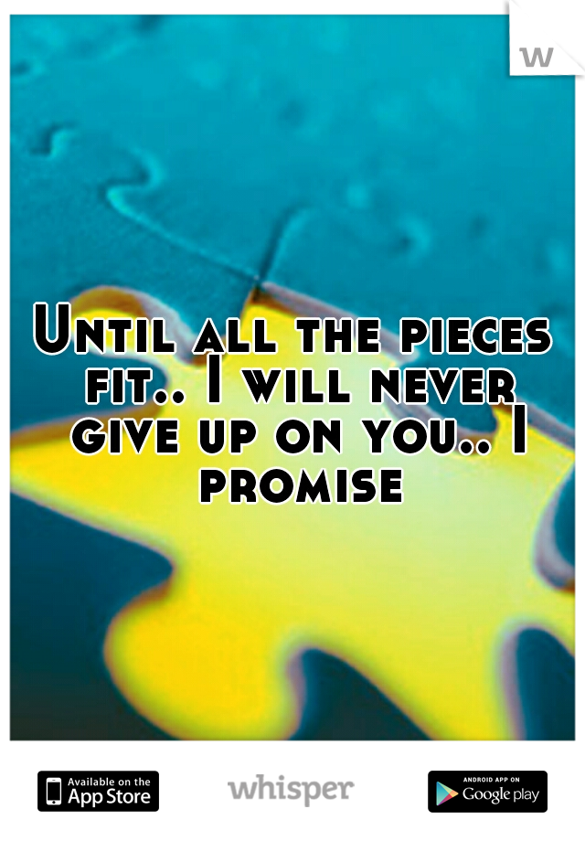 Until all the pieces fit.. I will never give up on you.. I promise