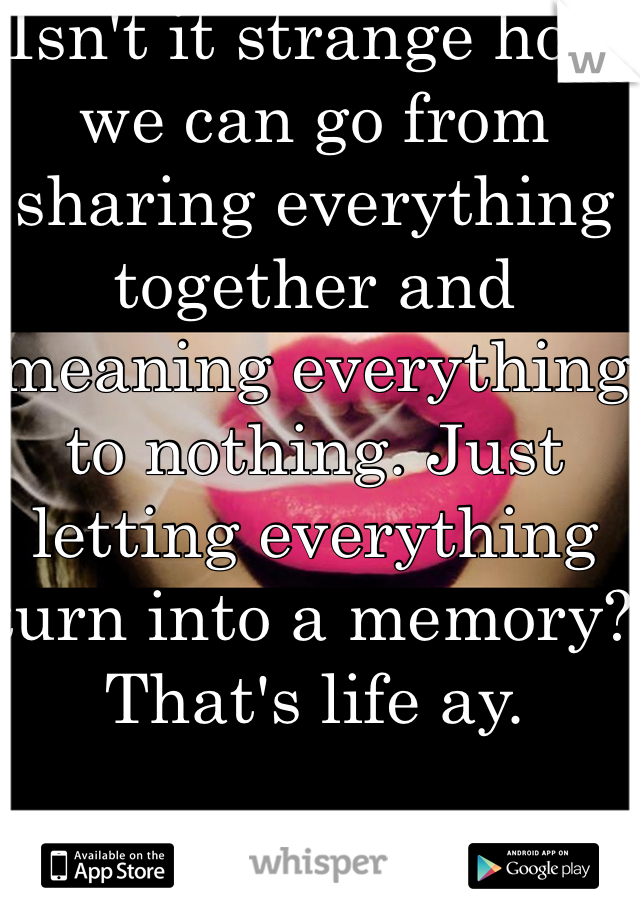 Isn't it strange how we can go from sharing everything together and meaning everything to nothing. Just letting everything turn into a memory? That's life ay.