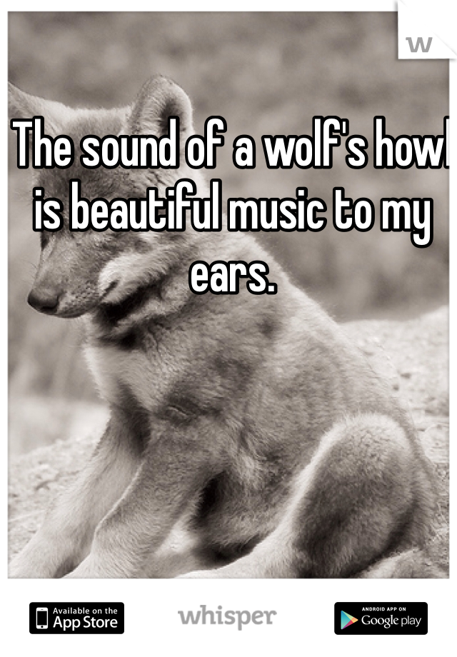 The sound of a wolf's howl is beautiful music to my ears.