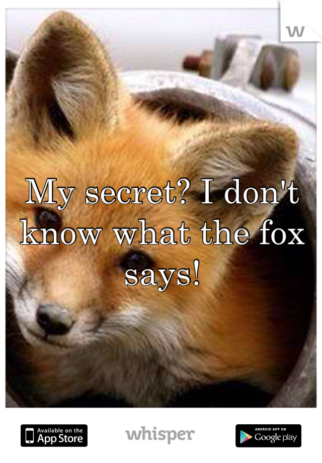 My secret? I don't know what the fox says!