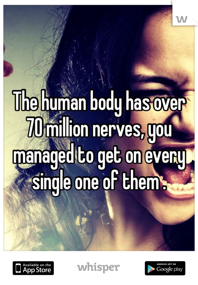 The human body has over 70 million nerves, you managed to get on every single one of them .