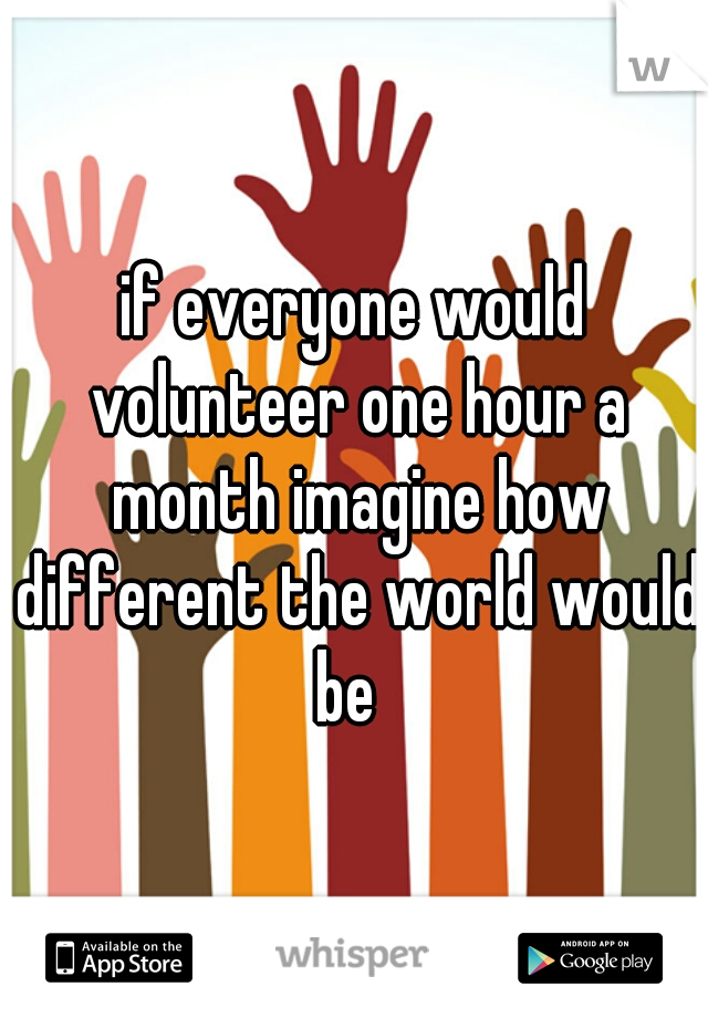 if everyone would volunteer one hour a month imagine how different the world would be