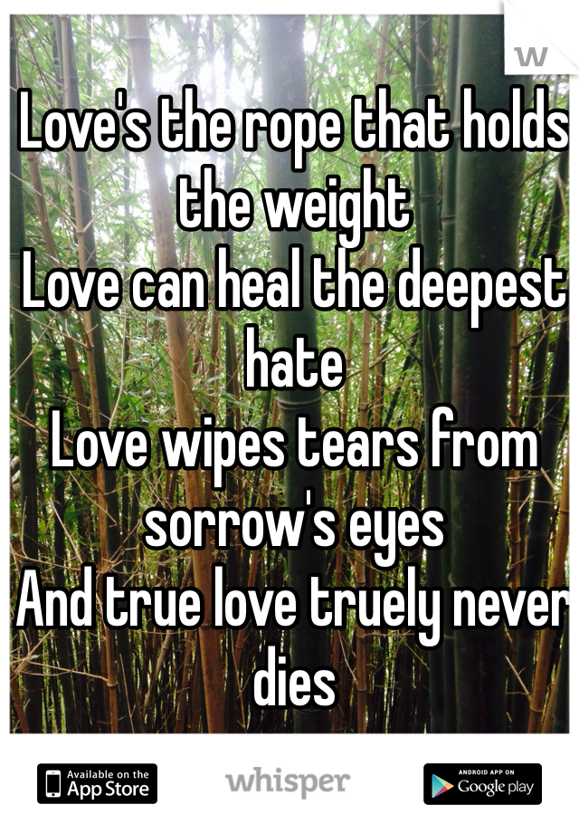 Love's the rope that holds the weight Love can heal the deepest hate Love wipes tears from sorrow's eyes And true love truely never dies