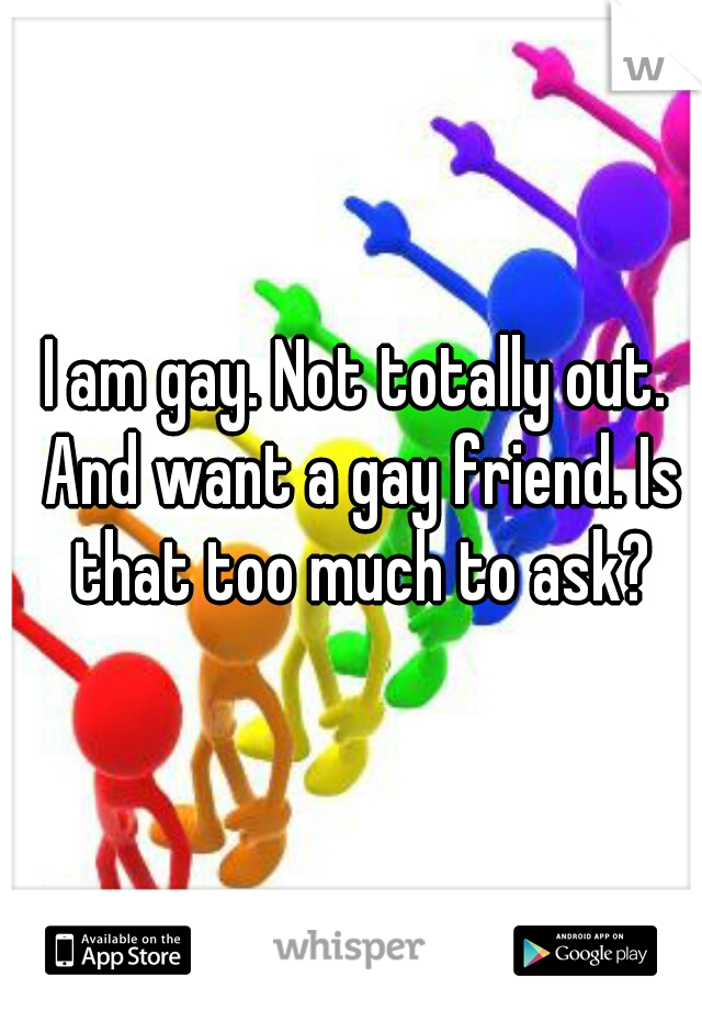 I am gay. Not totally out. And want a gay friend. Is that too much to ask?