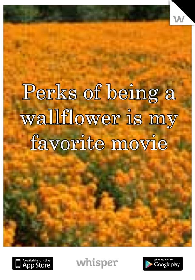 Perks of being a wallflower is my favorite movie