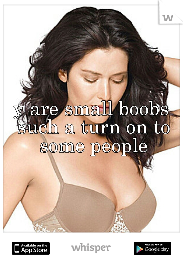 y are small boobs such a turn on to some people
