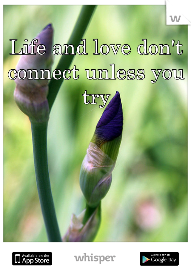Life and love don't connect unless you try