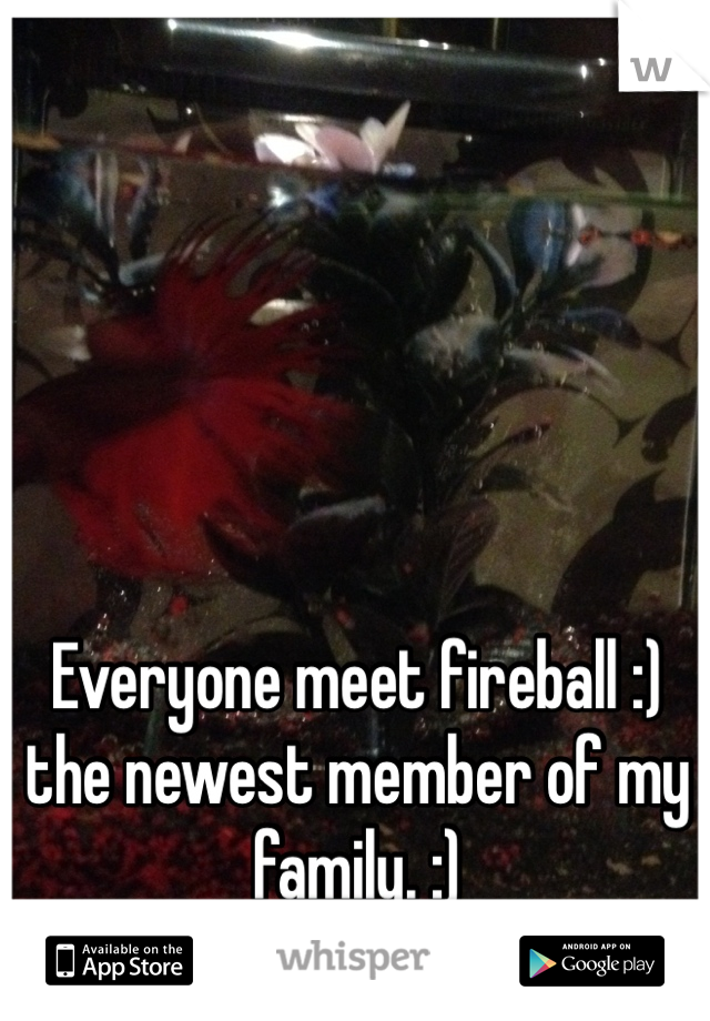 Everyone meet fireball :) the newest member of my family. :)