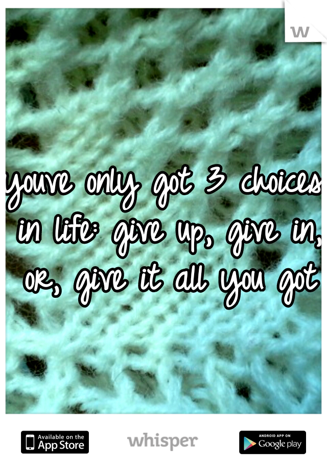 youve only got 3 choices in life: give up, give in, or, give it all you got