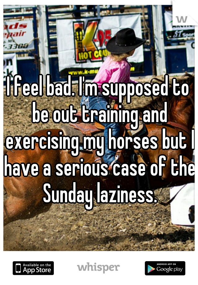 I feel bad. I'm supposed to be out training and exercising my horses but I have a serious case of the Sunday laziness.