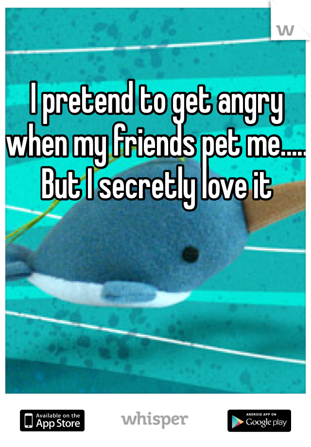 I pretend to get angry when my friends pet me..... But I secretly love it