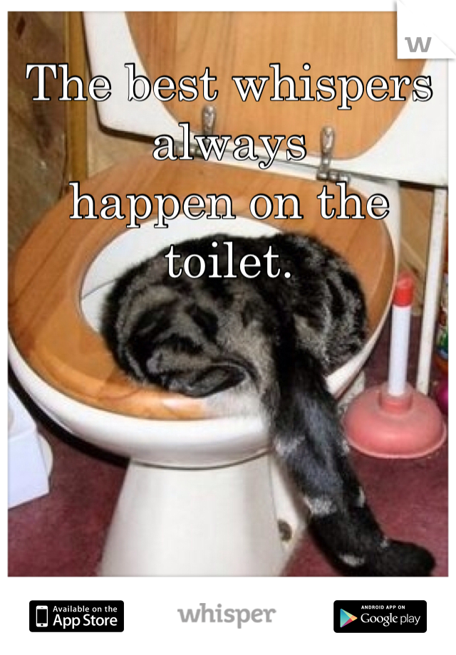 The best whispers always happen on the toilet.