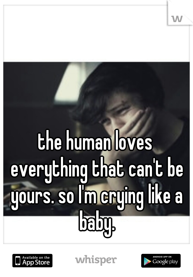 the human loves everything that can't be yours. so I'm crying like a baby.