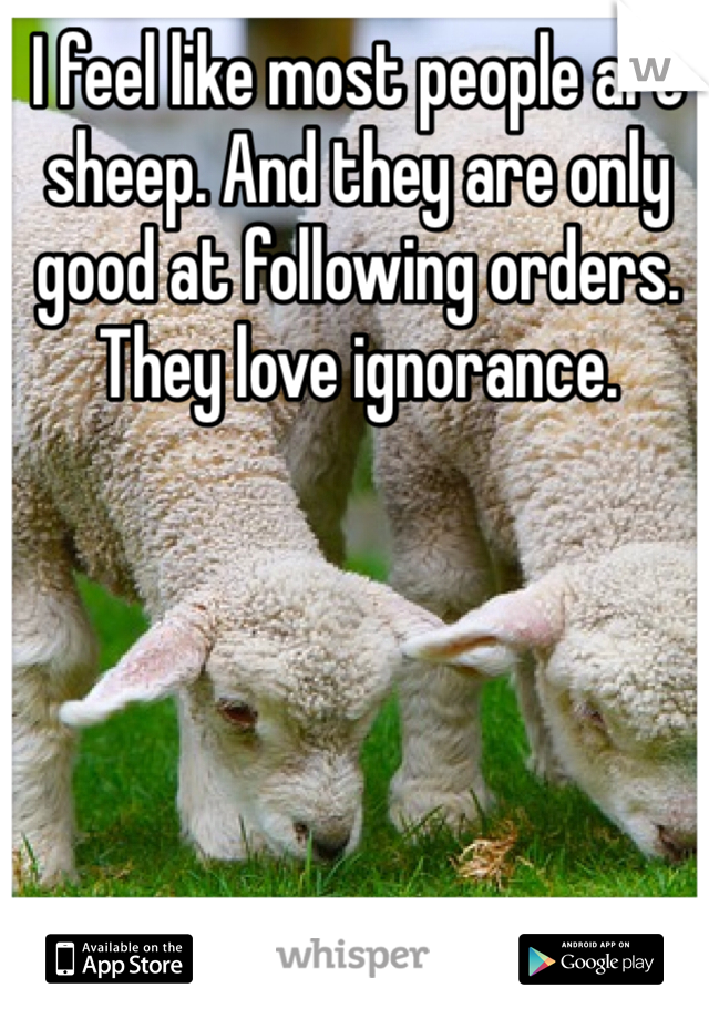 I feel like most people are sheep. And they are only good at following orders. They love ignorance.