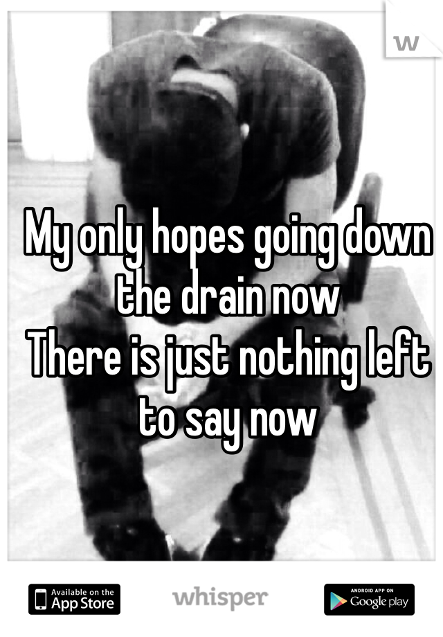 My only hopes going down the drain now There is just nothing left to say now