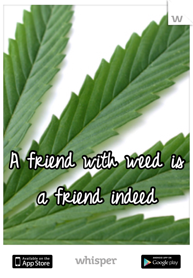 A friend with weed is a friend indeed