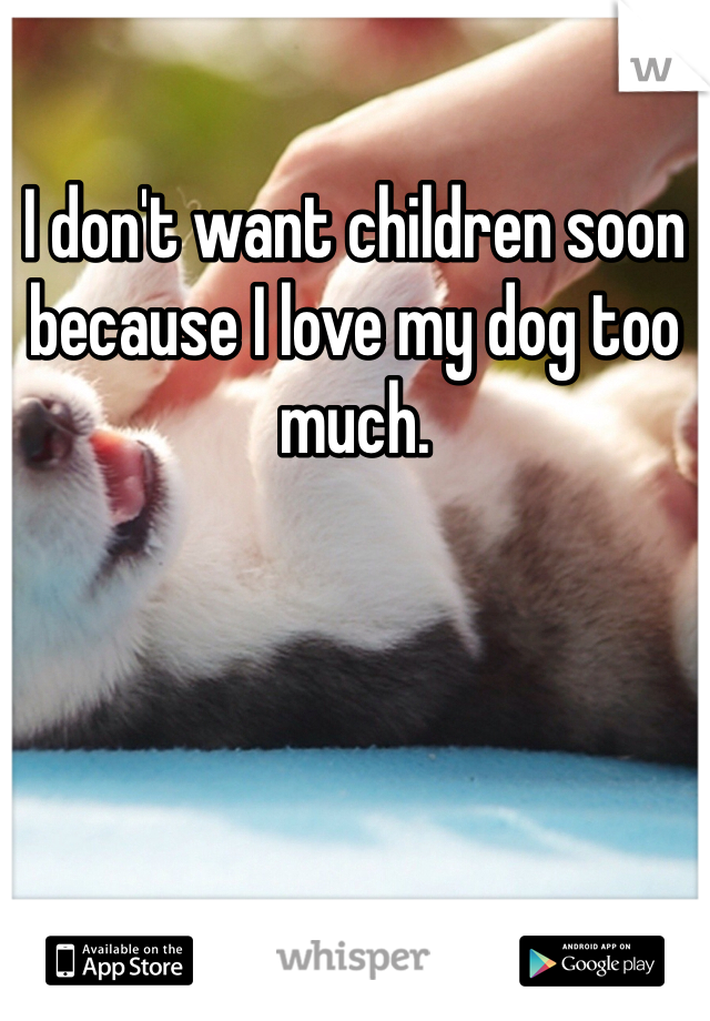 I don't want children soon because I love my dog too much.