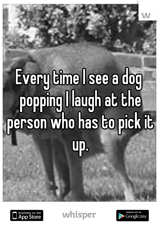 Every time I see a dog popping I laugh at the person who has to pick it up.