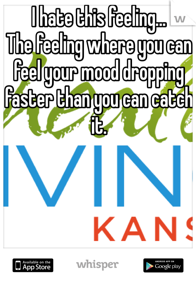 I hate this feeling... The feeling where you can feel your mood dropping faster than you can catch it.