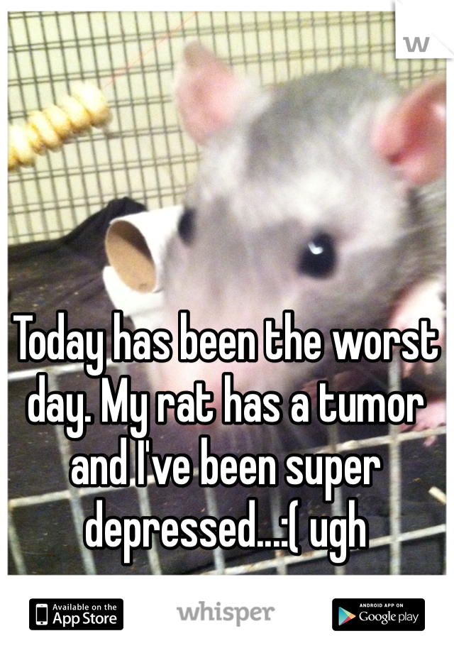 Today has been the worst day. My rat has a tumor and I've been super depressed...:( ugh