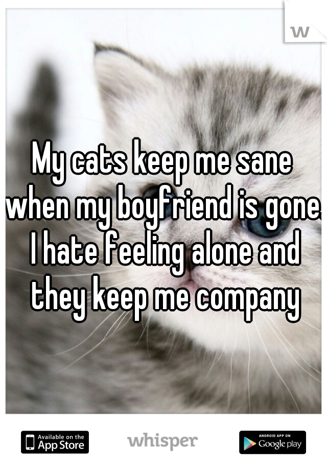 My cats keep me sane when my boyfriend is gone. I hate feeling alone and they keep me company