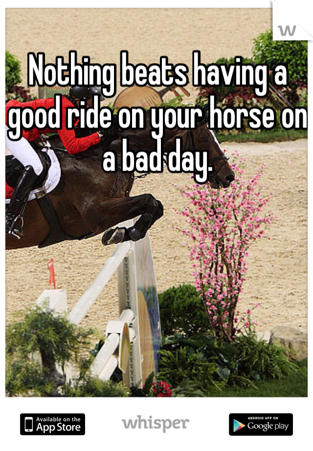 Nothing beats having a good ride on your horse on a bad day.
