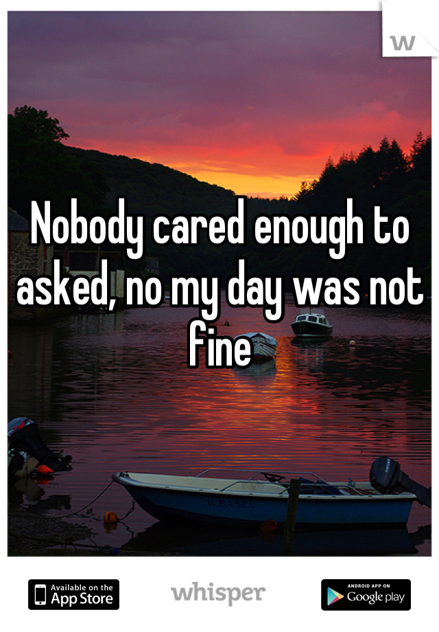 Nobody cared enough to asked, no my day was not fine