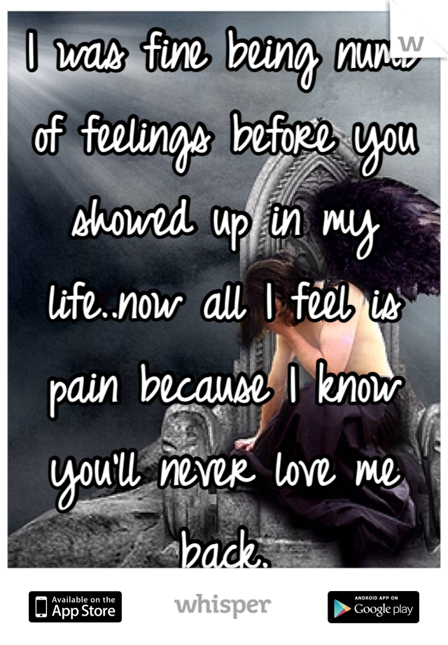 I was fine being numb of feelings before you showed up in my life..now all I feel is pain because I know you'll never love me back.