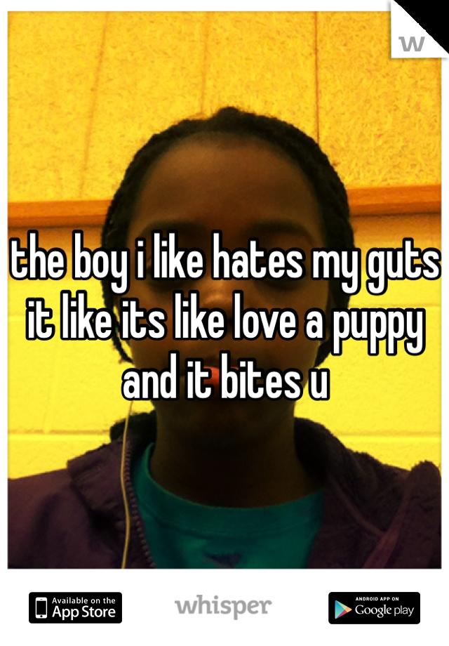 the boy i like hates my guts it like its like love a puppy and it bites u
