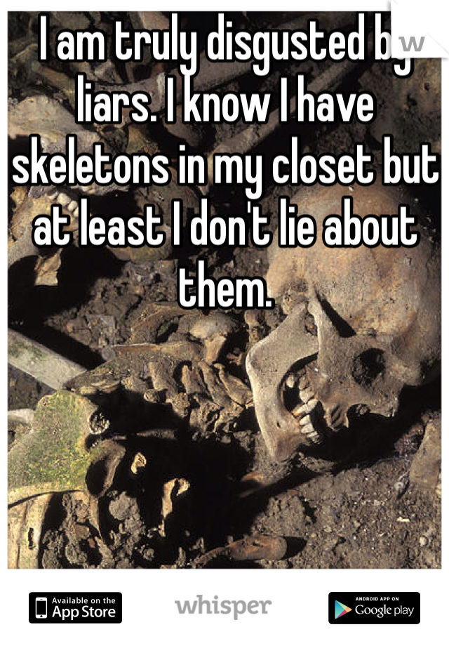 I am truly disgusted by liars. I know I have skeletons in my closet but at least I don't lie about them.