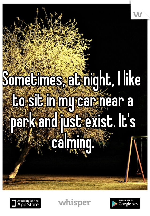 Sometimes, at night, I like to sit in my car near a park and just exist. It's calming.