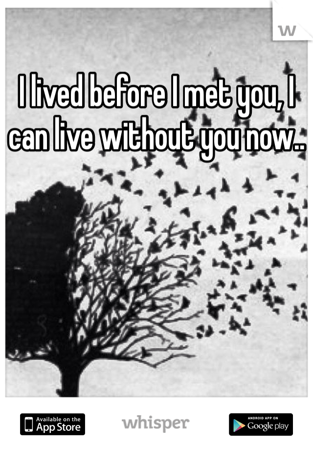 I lived before I met you, I can live without you now..