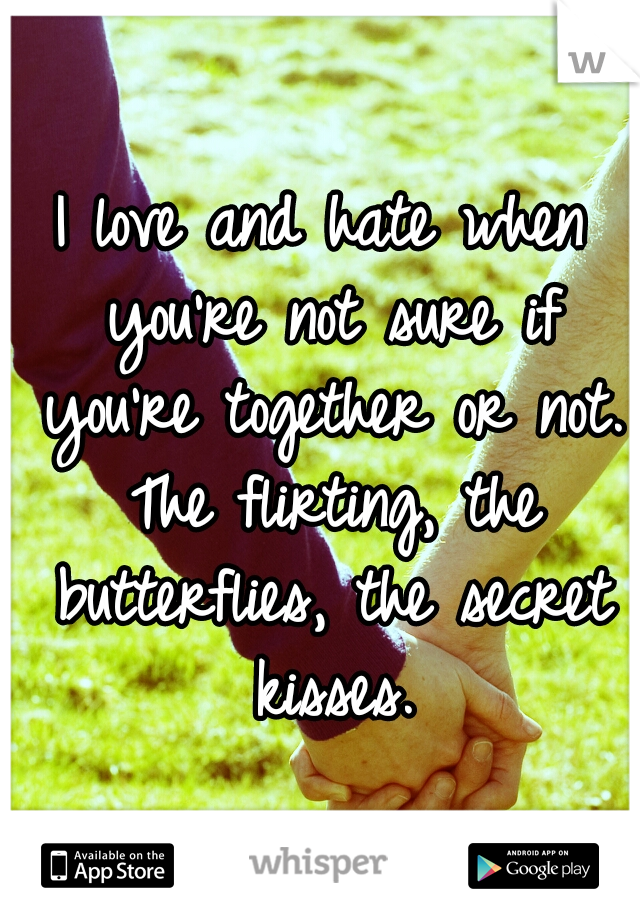 I love and hate when you're not sure if you're together or not. The flirting, the butterflies, the secret kisses.